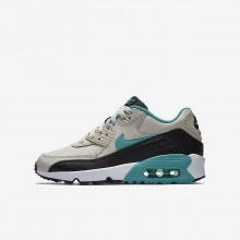Boys Light Bone/Black/White/Sport Turquoise Nike Air Max 90 Leather Lifestyle Shoes 101ORTWZ