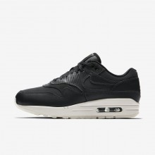 Nike Air Max 1 Premium Lifestyle Shoes For Women Anthracite/Black/Summit White 134NEIWS