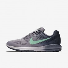 Nike Air Zoom Structure 21 Running Shoes For Women Provence Purple/Thunder Blue/Light Carbon/Green Glow 251DCMYE