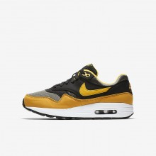 Boys Dark Stucco/Black/Mineral Yellow/Vivid Sulfur Nike Air Max 1 Lifestyle Shoes 316JUDAG