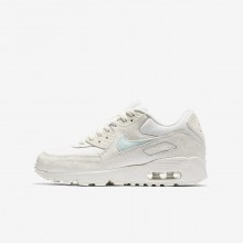 Nike Air Max 90 Mesh Lifestyle Shoes For Girls Sail/Igloo 353QGDRV