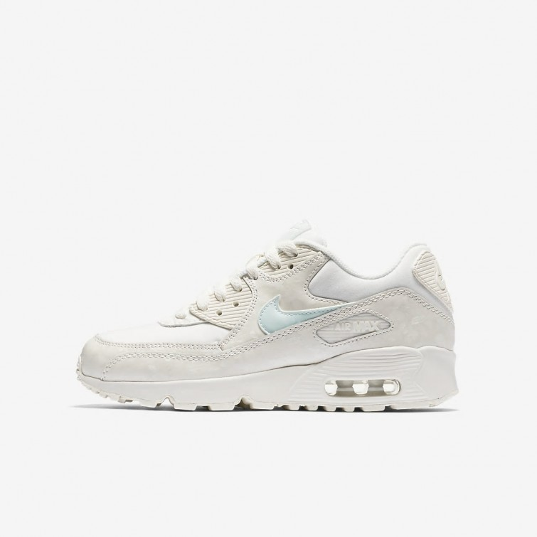 nike air max pinnacle 90 taille 35