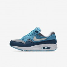 Boys Wolf Grey/Light Blue Fury/Blue Force/White Nike Air Max 1 Lifestyle Shoes 401IZBMP