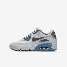 Boys Pure Platinum/Noise Aqua/Dark Grey/Cool Grey Nike Air Max 90 Leather Lifestyle Shoes 510EKDCH