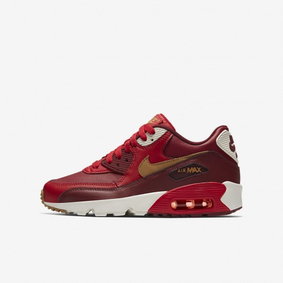 Boys Game Red/Team Red/Sail/Elemental Gold Nike Air Max 90 Leather Lifestyle Shoes 693RCATI