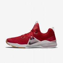 Nike Zoom Train Command Training Shoes For Men Gym Red/Vast Grey/Gum Medium Brown/Deep Burgundy 939OECQN